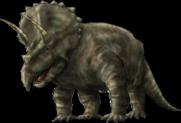 トリケラトプスの画像 p1_2